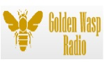 Golden wasp radio